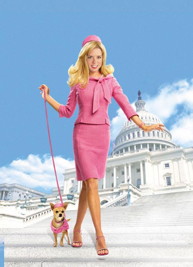 Legally Blonde Movie Emmett Attorney General Pam B...
