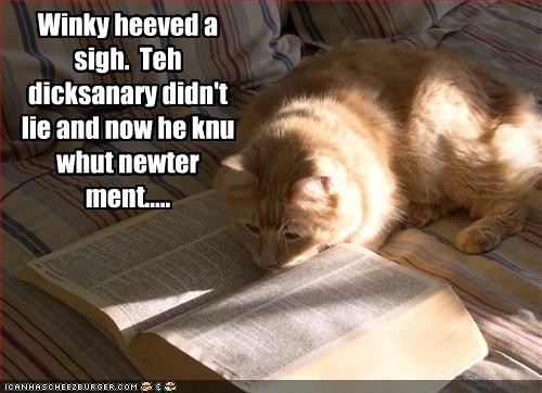 funny-pictures-cat-reads-the-dictionaryjpg