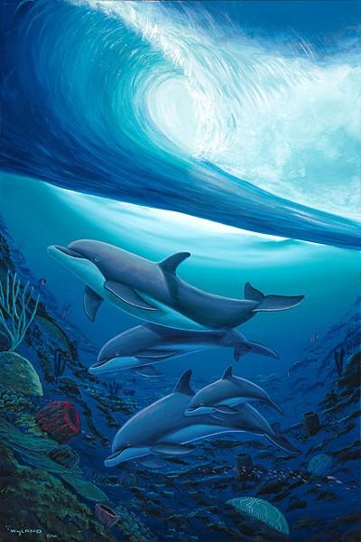 'Below the Surf'