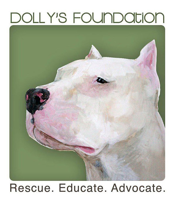 LOGO VIA DOLLY'S FOUNDATION