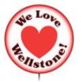 Camp Wellstone