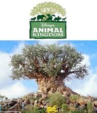 animalkingdom.jpg