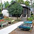 Green house falls to progress