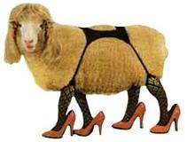 sheepjpg