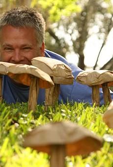 How to make a paper-bag mushroom