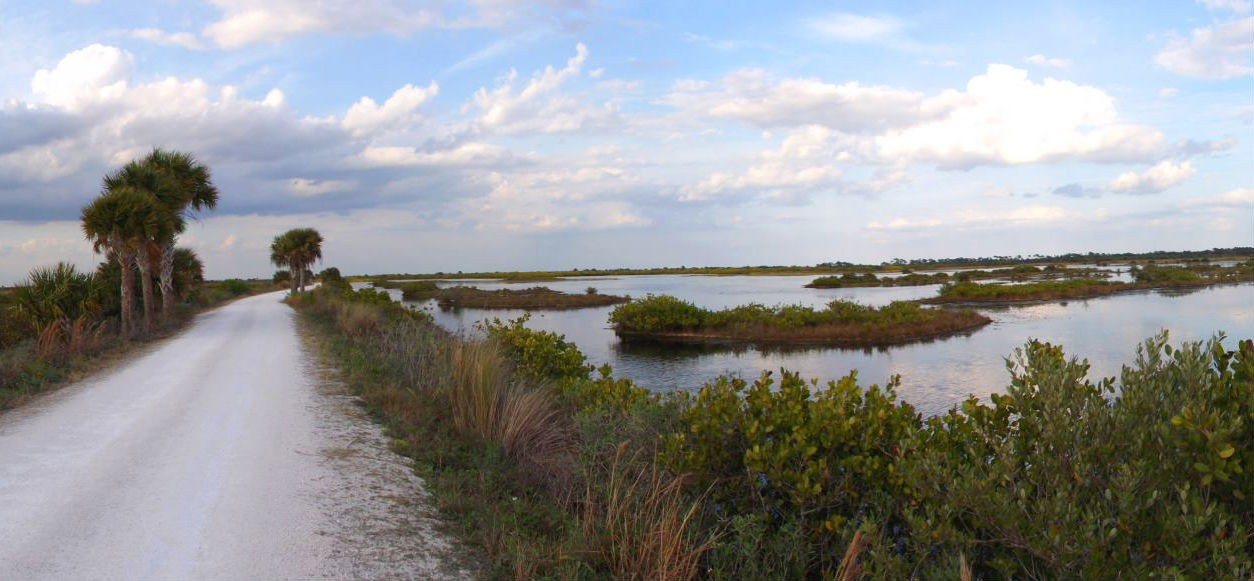 Image via Merritt Island National Wildlife Refuge