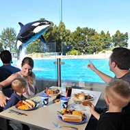 It's now slightly easier to get craft beer and pretzels at SeaWorld