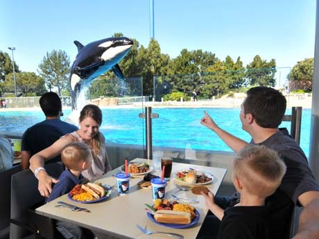 PHOTO VIA SEAWORLDPARKS.COM