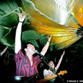 Live Music This Weekend [Pauses CD release, Sons of Tonatiuh, The Adolescents, more]