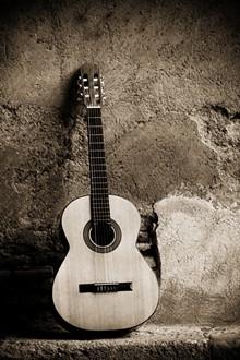 ce67c4c5_flamenco.jpg