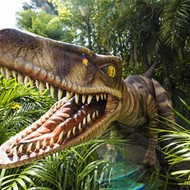 New Raptor Encounter attraction opens at Universal Orlando this weekend