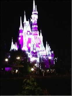 Oh, and an icicle-lit Cinderella Castle.
