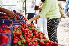 HANNAH GLOWGOWER - Orlando Farmers Market