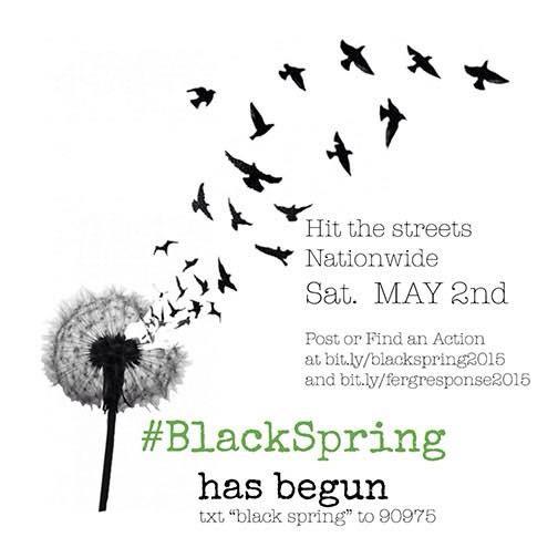 blackspring.jpg