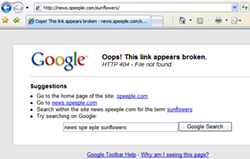 ie7-google-toolbar-custom-4041jpg