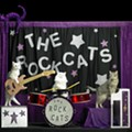 The Amazing Acro-Cats and the Winter Park Playhouse will make you feel like a happy little old lady