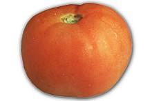tomatojpg