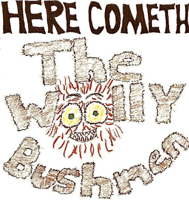 woolly-bushmenjpg