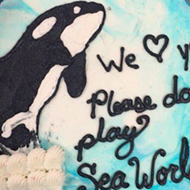 After baking a cake asking them not to perform, PETA will protest Hanson's concert today at SeaWorld