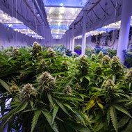Legalizing pot could be key issue for Florida Democrats in 2018