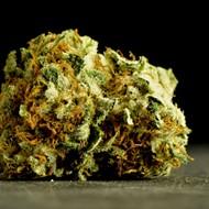 Florida's medical marijuana chief is stepping down