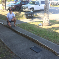 An extremely long lad was recently captured in Florida