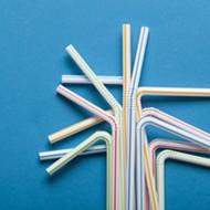 Florida lawmaker takes aim at plastic straws, bags