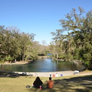 Mad as hell about the proposal to cash in on state parks? Join activists at Wekiwa Springs on Feb. 13 to protest