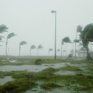 Who remembers Hurricane Wilma? No? Read this