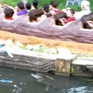Video surfaces showing Disney employee fending off alligator near Splash Mountain