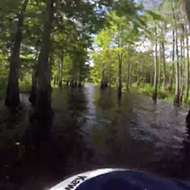 Here's what it's like to jet ski the narrow and remote canals of the St. John's River