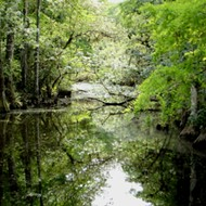 Trump is now proposing $200 million for restoration work in the Florida Everglades