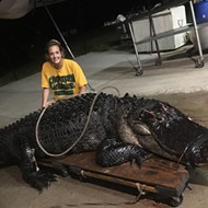 Look at this absolute unit that was captured in Leon County, Florida