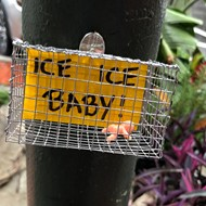 Florida artist cages toy babies to protest Trump's migrant detention centers