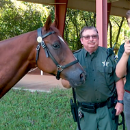 For the love of God, will someone please name this Orange County Sheriff's horse?