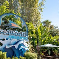 SeaWorld's CEO jumps ship after more than 100 Orlando employees are laid off