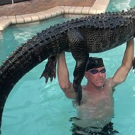 Shirtless Florida man removes 9-foot alligator from swimming pool