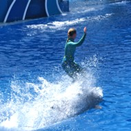 PETA takes credit for SeaWorld ending 'dolphin surfing' shows