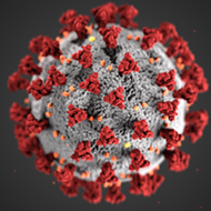 Two more case of coronavirus reported in Florida