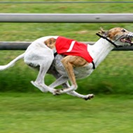 Florida's greyhound racing ban, set to take effect in 2021, faces another lawsuit