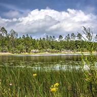 State Cabinet approves Florida Forever land conservation deals