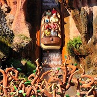 Disney fans call for Splash Mountain to be re-branded