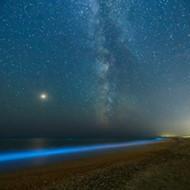 Natural bioluminescence lights up Space Coast waterways after dark