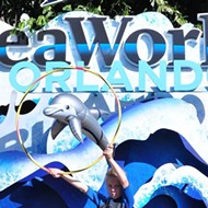 SeaWorld to screen scary seasonal cinema at 'Flicks and Frights' drive-in events