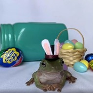 University of Central Florida student's tree frog wins Cadbury Bunny contest