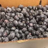 A truck full of local, organic blueberries from King Grove is now making weekly drops throughout greater Orlando