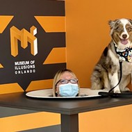 Orlando's Museum of Illusions to host 'puppy paw-ty' in September