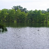 Lake Rowena still unsafe for swimming, says city of Orlando