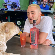 Dog park-meets-bar concept Pups Pub is looking to open in Orlando