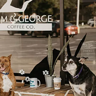 Pop-up adoptable dog cafe Sam & George to open brick-and-mortar location